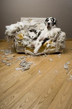 Presupuesto para tapizar muebles en madrid abc tapiceros - Tapiceros en madrid ...